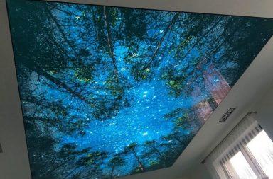 Потолок ПВХ лес